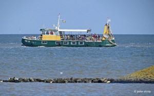 groot-boot1