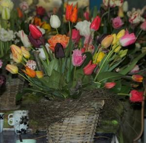 floratuin workshop